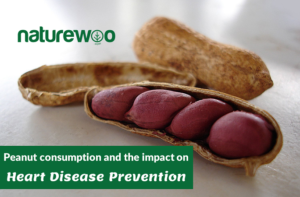 Peanut Consumption and the Impact on Heart Disease Prevention